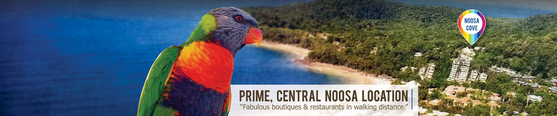 Prime, central Noosa location